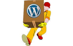 WordPress Umzug